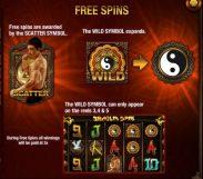 shaolin spins slot screenshot 3