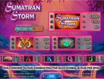 sumatran storm slot screenshot 2