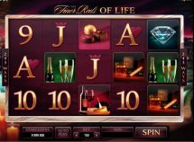 the finer reels of life slot screenshot 1