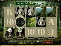 untamed giant panda slot screenshot 1