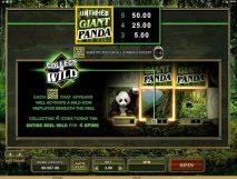 untamed giant panda slot screenshot 2