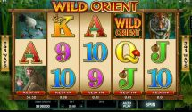 wild orient slot screenshot 1