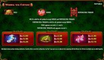 wishing you fortune slot screenshot 2