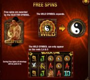shaolin spins slot screenshot 3