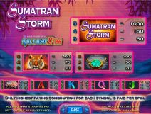 sumatran storm slot screenshot 2