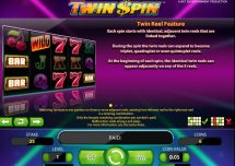 twin spin slot screenshot 2