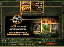 untamed bengal tiger slot screenshot 2