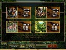 untamed bengal tiger slot screenshot 4