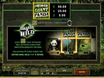 untamed giant panda slot screenshot 2