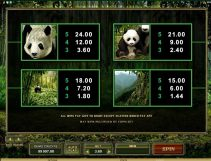 untamed giant panda slot screenshot 4