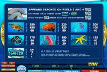 dolphin coast slot screenshot 4